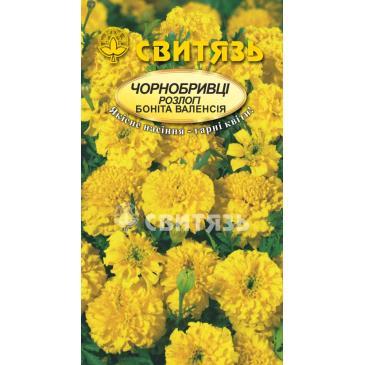 Бархатцы раскидистые Бонита Валенсия, 0,5 г фото 1