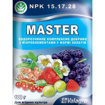 Удобрение минеральное Master NPK 15.17.28 Для ягодных культур, 100 г фото 1