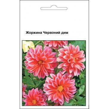Жоржина Червоний Дим, 0,1 г фото 1
