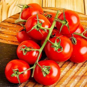 Семена Томат высокорослый (индетерминантный) Кристал F1, 0,02 г фото 1