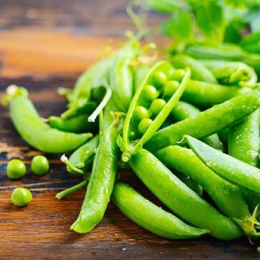 Горох овочевий Преладо F1, 20 нас. СЦ фото 1