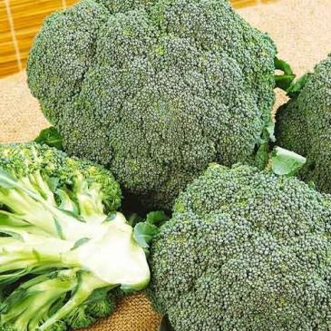 Капуста брокколи Монако F1, 20 сем. фото 1