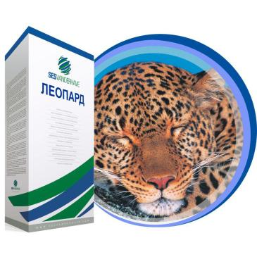 Буряк цукровий дражований Леопард, 1 кг фото 1
