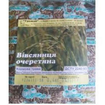 Вівсяниця (костриця) очеретяна Мустанг 400 г фото 1