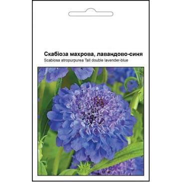 Скабиоза махровая, лавандово - синяя, 0,2 г фото 1