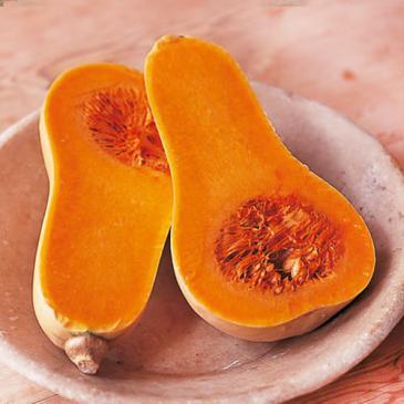Гарбуз овочевий Арахісове масло, 0,5 г СЦ фото 1