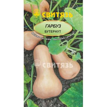 Гарбуз овочевий Бутернут, 15 нас. фото 1