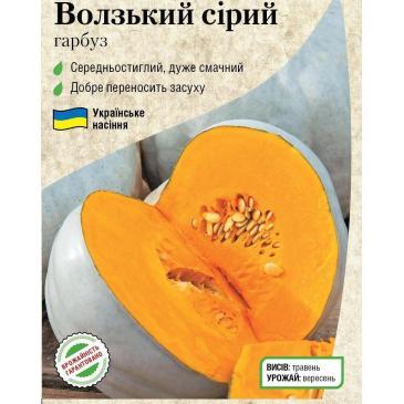Гарбуз овочевий Волзький сірий, 3 г фото 1