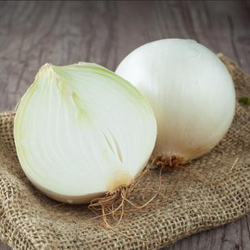 Лук репчатый Белый Джамбо, 1 г фото 1