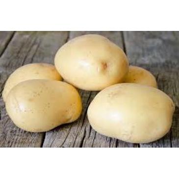 Картопля Конект 2 кг фото 1