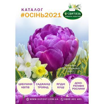 Друкований безплатний каталог продукції Осінь - 2021 фото 1