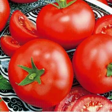 Томат высокорослый (индетерминантный) Президент ІІ F1, 8 сем. фото 1